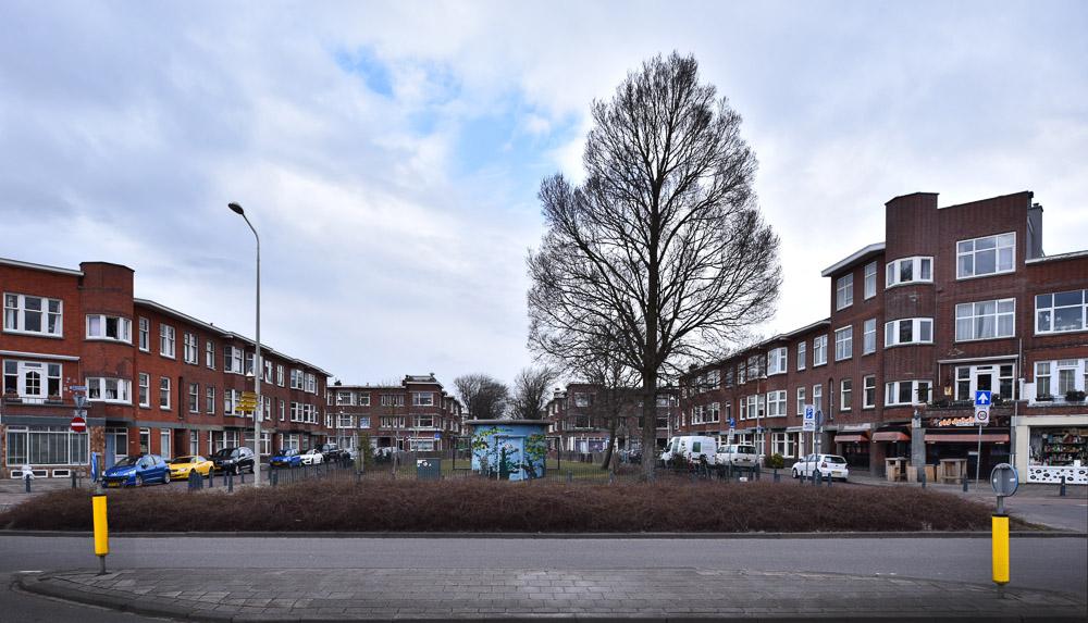 dakopbouwen bloen en vruchtenbuurt nieuwe haagse school