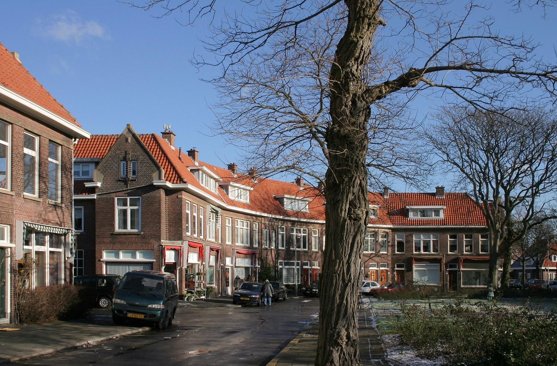 woningen mezenlaan, nieuwe haagse school architectuur in de vogelwijk